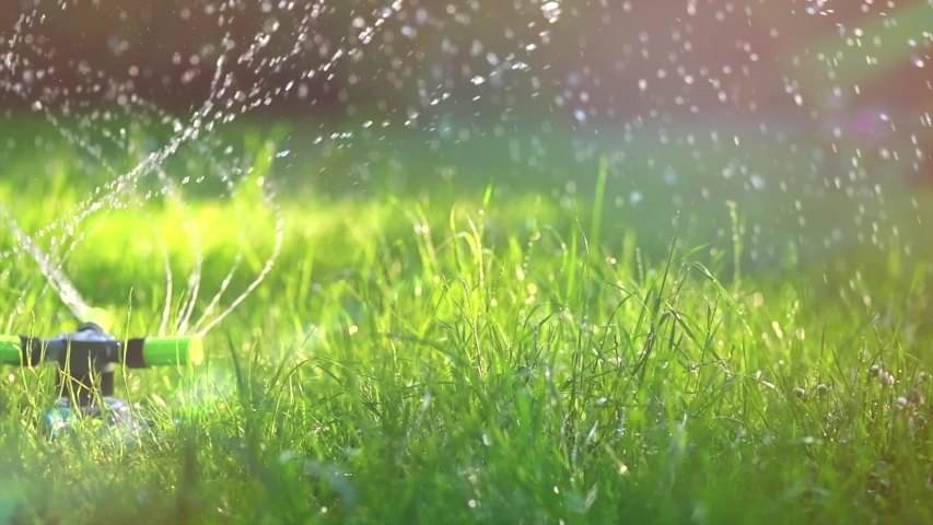 Garden, Grass Watering. Smart garden activated with full automatic sprinkler irrigation system working in a green park, watering lawn, flowers and trees sprinkler head rotation. Gardening 4K UHD slow