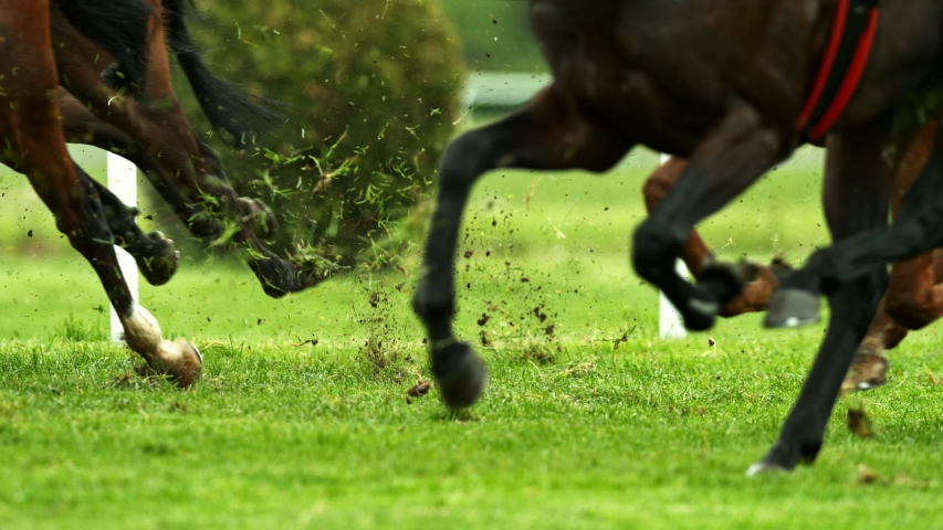 Horse Racing Stock Video Footage 4k And Hd Video Clips Shutterstock