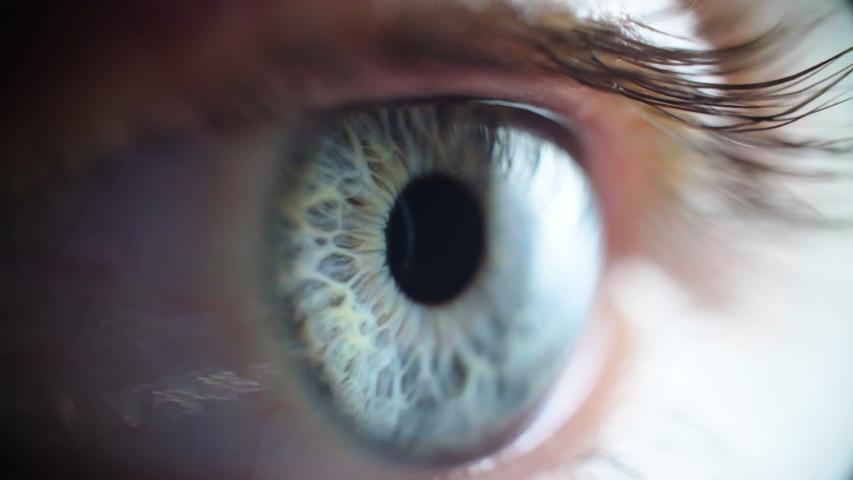 Macro shooting of grey woman's eye   Shutterstock HD Video #1032584942