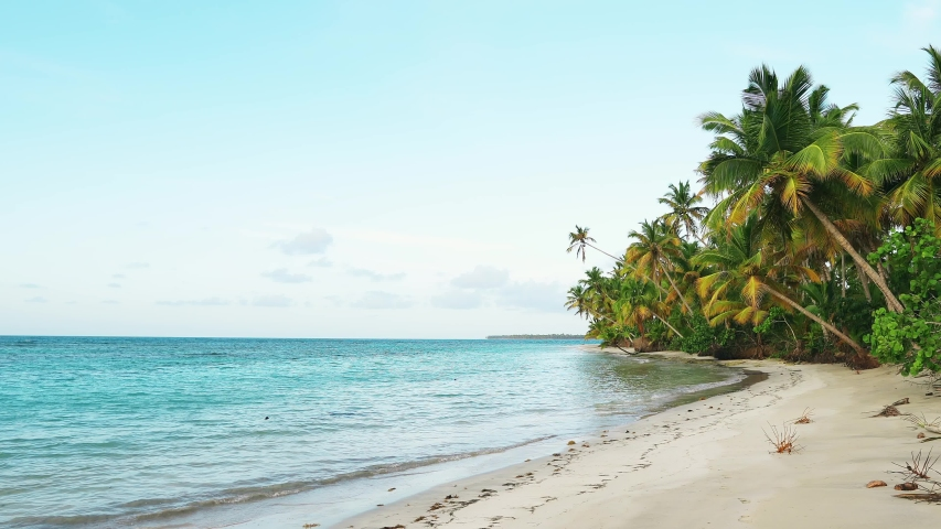 Sunset on sea shore. Wild beach with coconut palm trees video 4K. Beautiful sea and sky background. Sunset on amazing sea. Clean shore and sea. Best islands in the world. Nature sunset landscape #1032643598