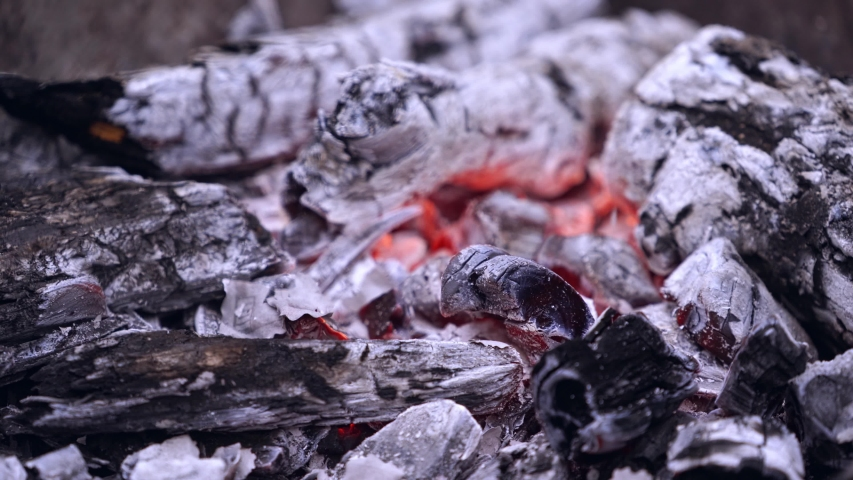Torn american money burning in a fire. Pieces of one hundred dollars banknote falling into flames and burn up on fire burned wood. | Shutterstock HD Video #1032806417