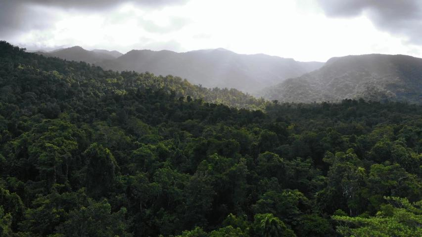 4K Mountain Forest Landscape  in Cairns Australia | Shutterstock HD Video #1032929765
