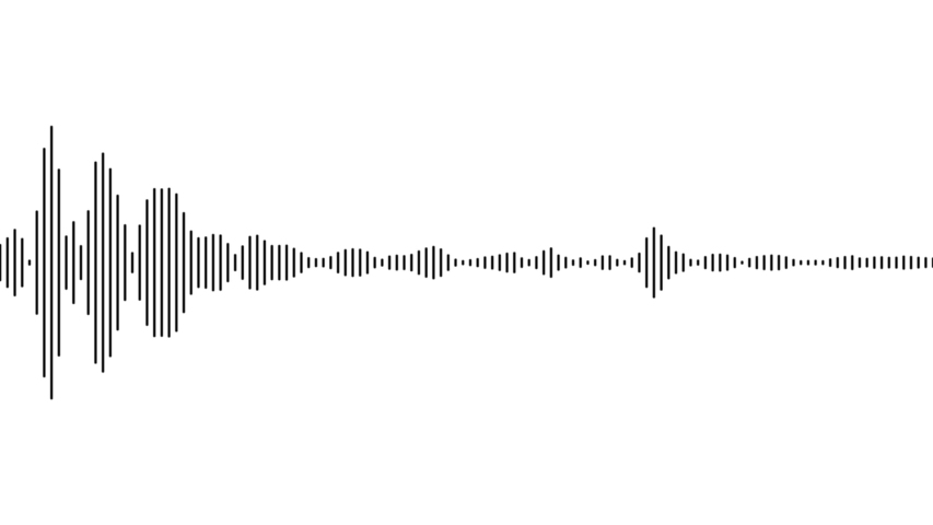 A simple black and white audio visualization effect