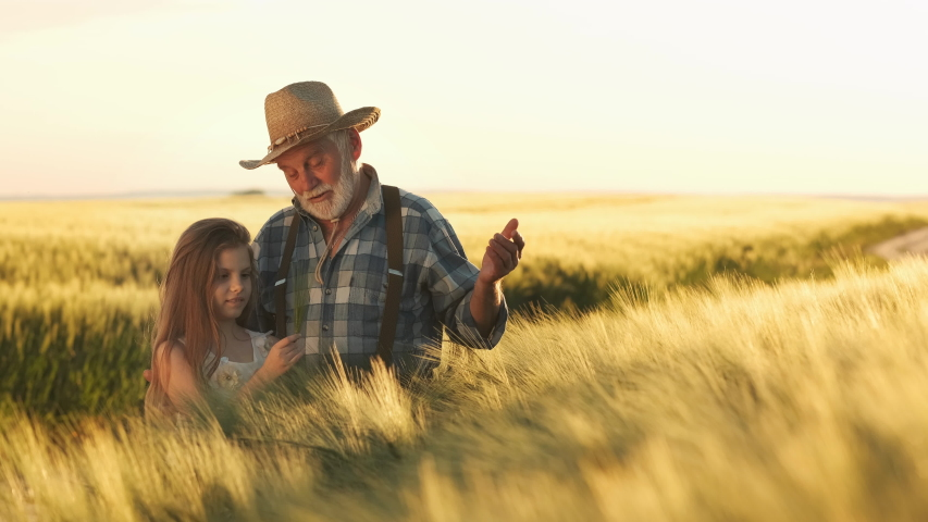 Grandfather Teaches Granddaughter. People Are Talking. Busy Farmers. Happy Childhood. Agriculture, Farming Concept. Royalty-Free Stock Footage #1033150103