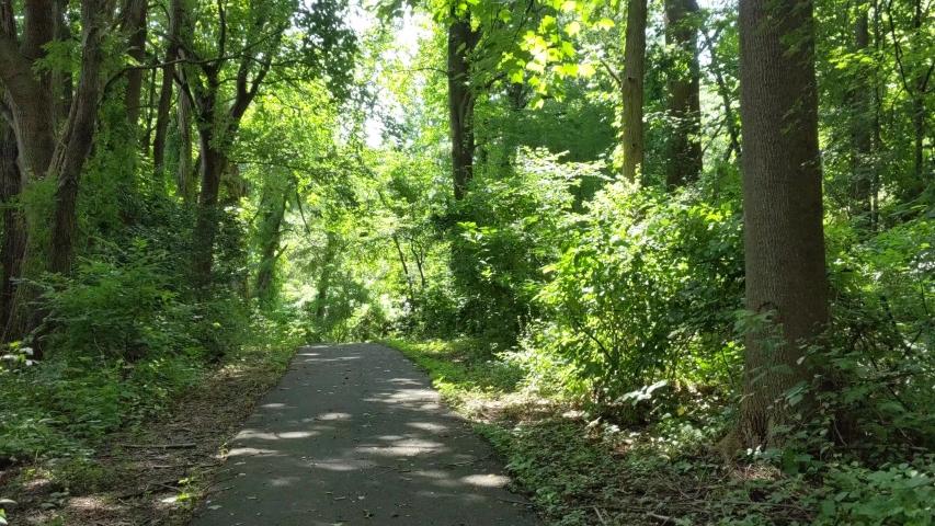 Beautiful summer park in Virginia   Shutterstock HD Video #1033197848