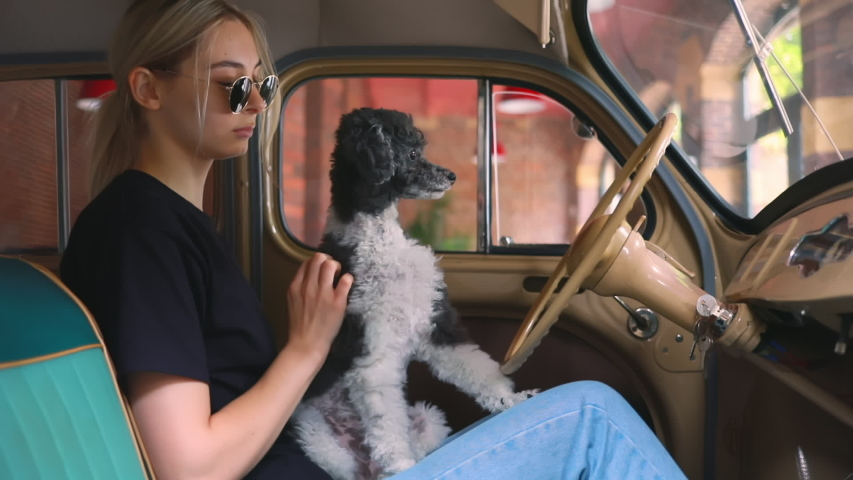 Stylish woman play with dog sitting in his vintage car wait husband   Shutterstock HD Video #1033354982