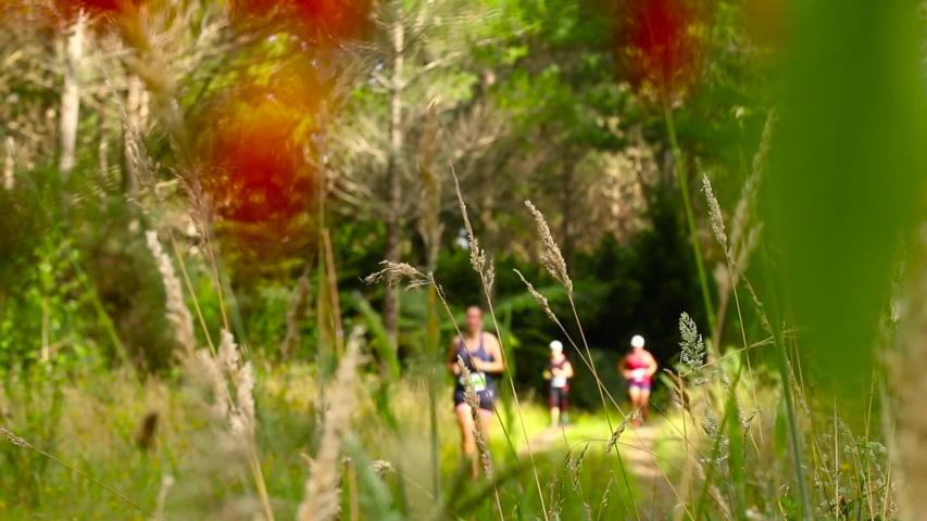 New Plymouth, Taranaki / New Zealand - 01 19 2019: Runners on The Good Home Taranaki Off-Road Half Marathon at Lake Mangamahoe | Shutterstock HD Video #1033362602
