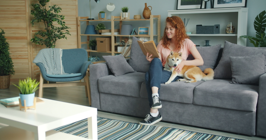 Attractive young lady enjoying interesting book and stroking cute dog at home sitting on couch smiling. Modern youth, lifestyle and interior concept. | Shutterstock HD Video #1033396634