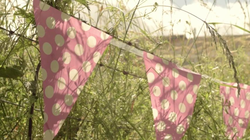 Bunting polka dot in summer garden | Shutterstock HD Video #1033767149