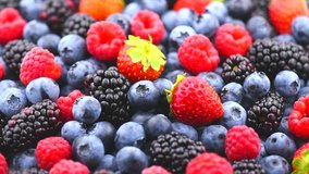 Berries. Various colorful berries rotation background. Mint leaves, Strawberry, Raspberry, Blackberry, Blueberry close-up rotating backdrop. Bio Fruits, Healthy eating, Vegan food, diet. 4K UHD video