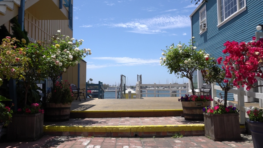 Beautiful view of Marina del Rey from restaurant and shop. In frame a lot of bright tropical flowers. Colorful houses adorn pier. Los Angeles California. | Shutterstock HD Video #1034202419