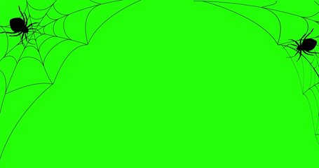 Halloween, Spider and Web,Alpha channel, Motion ,, Present, Video frame, Frame, Animation, Transparent, Background, Gif.Minimal motion design animation