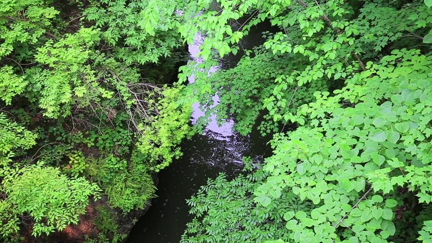 Flowing waters | Shutterstock HD Video #10345199
