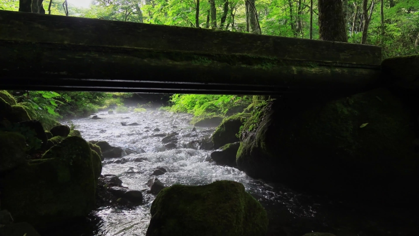 Midsummer mountain stream, creek flowing under the bridge | Shutterstock HD Video #1034649479