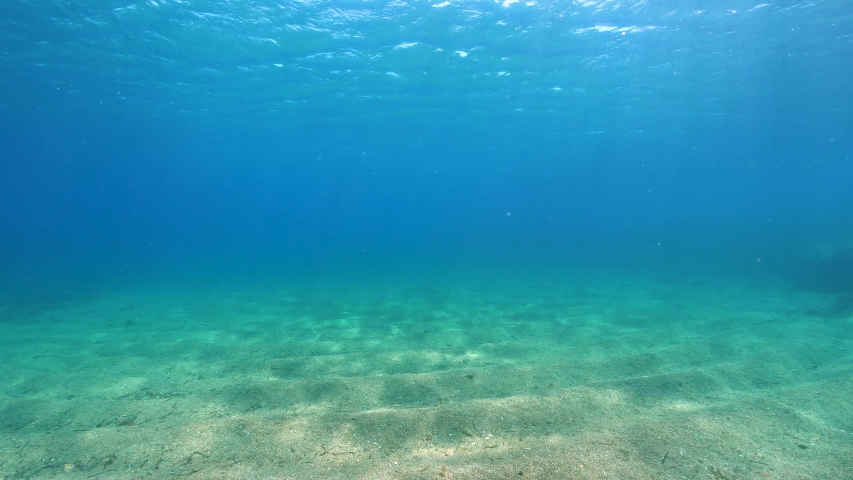 Under water surface and sandy seabed in the Mediterranean sea, natural scene, French Riviera, Port-Cros, Var, France