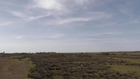 Cloudy sky and brown grass wide field. Samsun, Kizilirmak Delta
