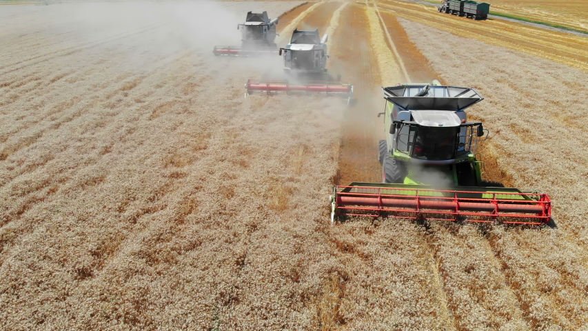 Aerial view of wheat harvest. Drone shot flying over three combine harvesters working on wheat field | Shutterstock HD Video #1034818520