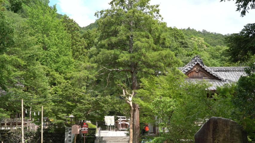 Izumo Daijingu in Kyoto, August 2019 | Shutterstock HD Video #1034895980