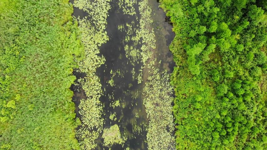 Aerial view. River Krutynia, famous waterway, canoe trail. Masurian Lakeland in Poland. Summer landscape in Europe | Shutterstock HD Video #1034897117