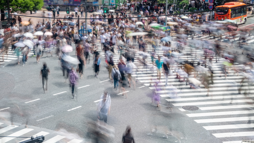 4K Timelapse high angle view wide shot cityscape crowded pedestrian people man and woman tourist walking crossing the street crosswalk with driving cars on the road in summer at Shibuya, Tokyo, Japan | Shutterstock HD Video #1034957276