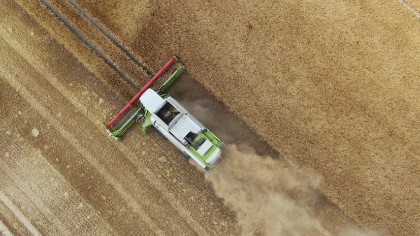 Combine harvester - aerial view drone shot of one of the biggest combine harvester at harvesting golden ripe wheat field in germany | Shutterstock HD Video #1035000713
