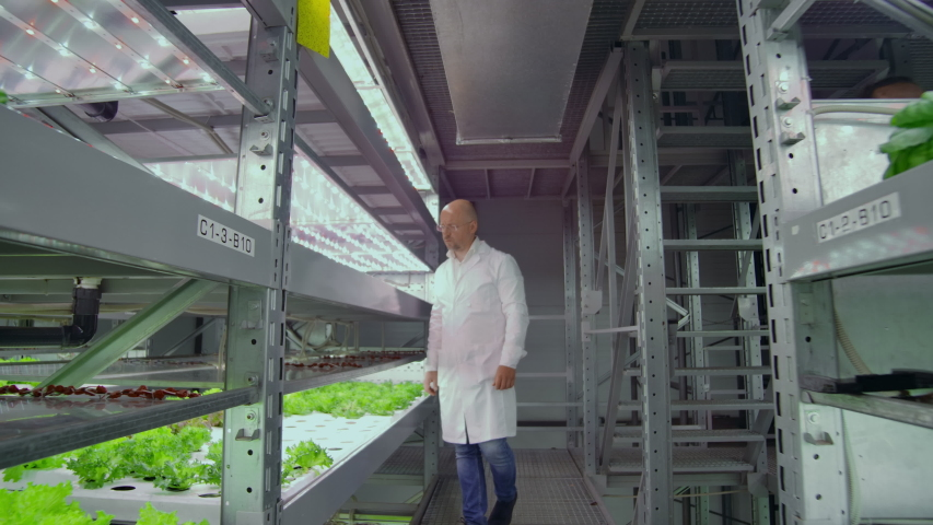Scientists and farmers work together in a team to create clean plants in an artificial environment using modern technology laptops and tablets #1035093440
