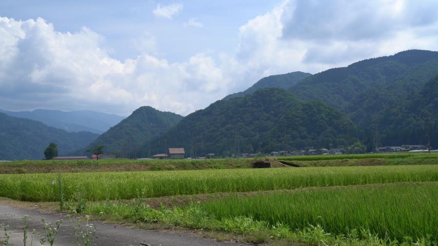 Hakusan, Japan – 9 August: Watagadak(waterfall) of the image content | Shutterstock HD Video #1035146522