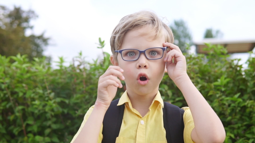 Emotional portrait of blond boy in glasses. Handsome surprised child | Shutterstock HD Video #1035169598