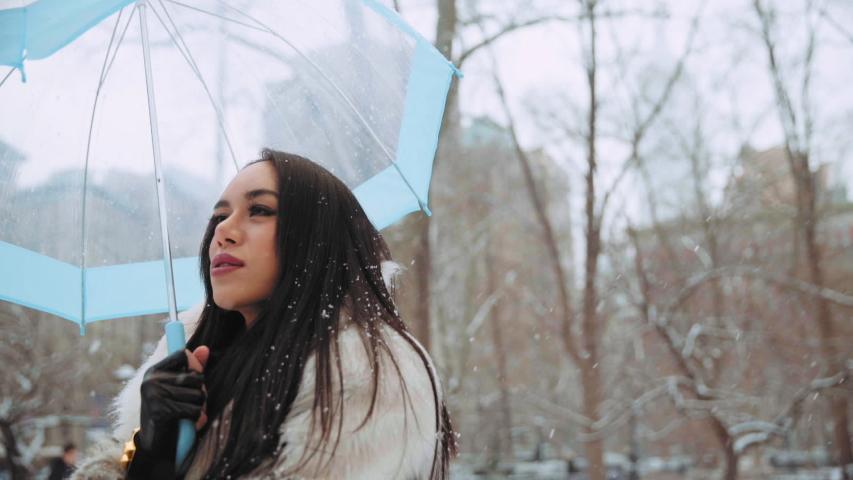 Thai transgender woman enjoying snow, New York City, United States | Shutterstock HD Video #1035170039