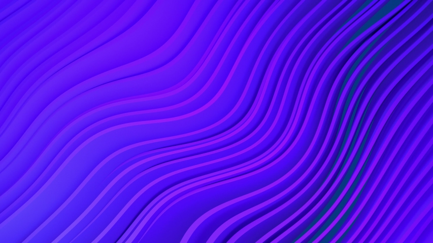 4k 3D animation of rows and rows of colorful purple and pink stripes rippling. Colorful wave gradient animation.. Future geometric patterns motion background. 3d rendering