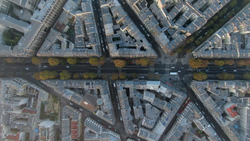Aerial: Tree-Lined Avenue Among Angled City Blocks in Paris, France