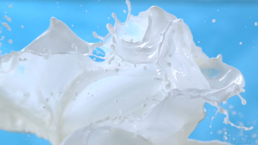 Milk Waves Splashing on Blue Background in Slow Motion at 1500 fps