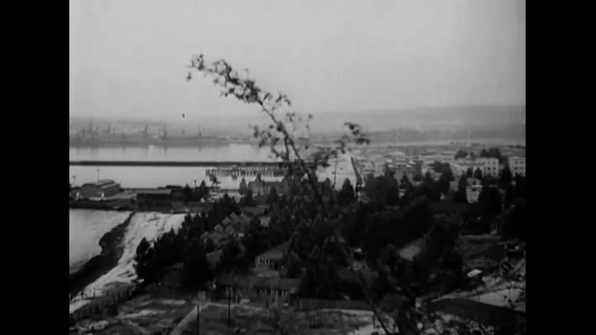 CIRCA 1939 - German artillerymen fire on Polish docks.