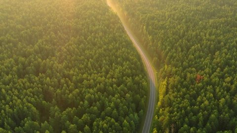 Transportation background.  Highway in forest aerial view. Green forest. Landscape with road.