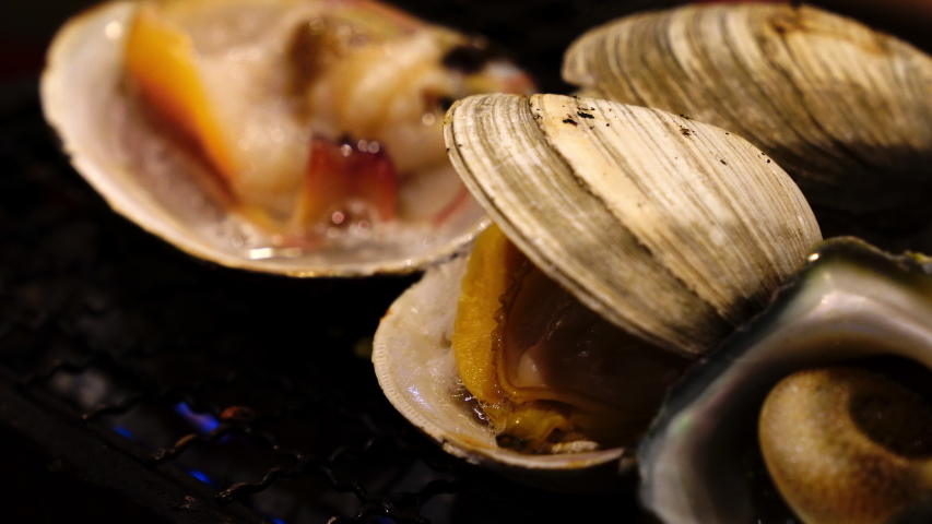 4K Close up shot of grilled hard clam shellfish on charcoal grill stove. Grilled seafood in japanese seafood restaurant.