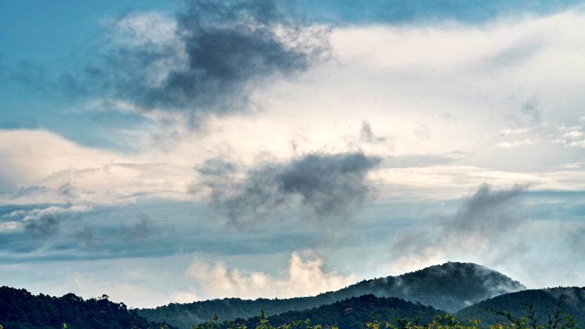 Timelapse of different layers of cloudsing fast and slowly above european wooded hills 4K