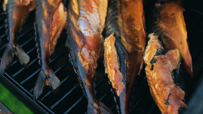 Smoked scomber cooking in the smokehouse. BBQ.   Shutterstock HD Video #1035730502