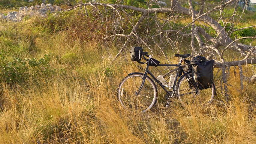 Touring bicycle standing near an old tree with back panniers | Shutterstock HD Video #1035769772