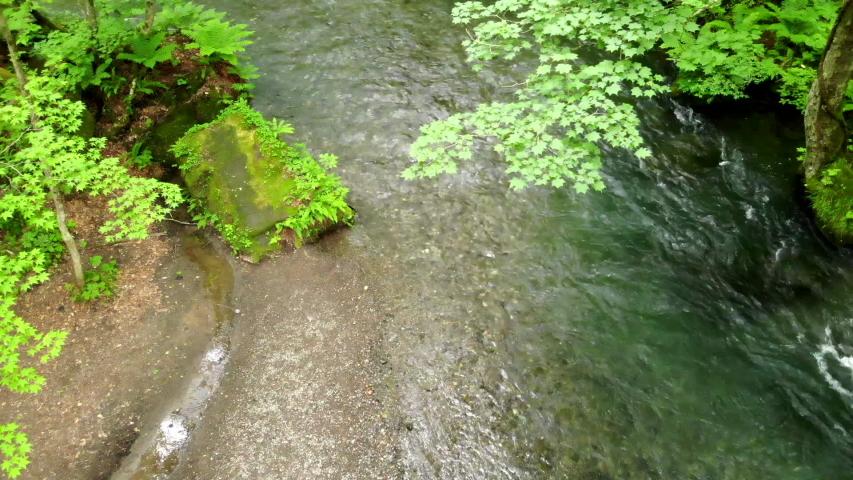 Drone footage of Oirase Gorge in Aomori Prefecture, Japan  | Shutterstock HD Video #1036021277