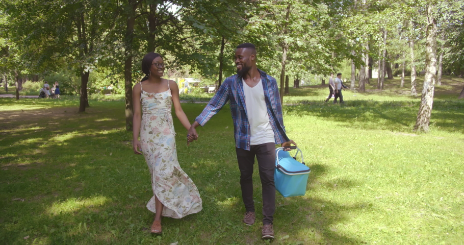 Portrait of loving african-american young couple walking in city park, carrying basket for picnic | Shutterstock HD Video #1036072106