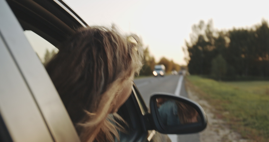 Car road trip. Happy beautiful woman looks out of the open window in wonder of summer holiday travel. Freedom concept. Wind in hair. Female passenger in auto journey. Lifestyle, adventure, fun concept