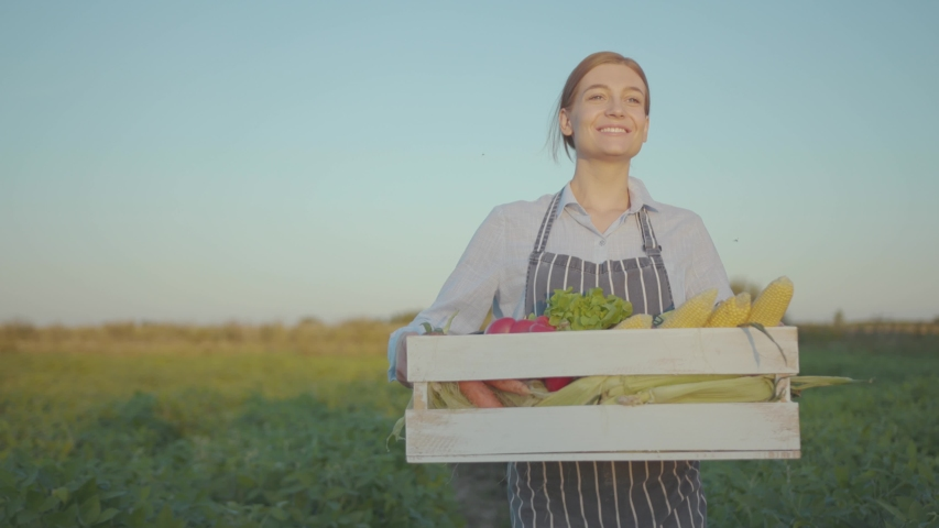Charming woman walking look around smile holding a harvest of fresh vegetables healthy living gardening plant farmer caucasian green natural agriculture summer nature smiling worker slow motion | Shutterstock HD Video #1036349453