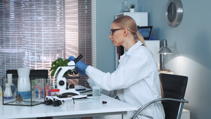 Female scientist making experiments with organic materials in chemistry lab, using pipette to drop fertilizers on plant | Shutterstock HD Video #1036355192