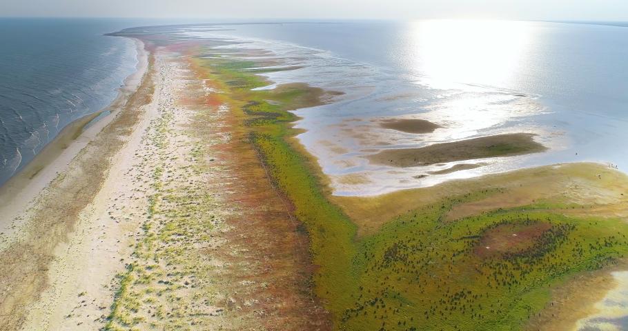 Aerial view of Sacalin peninsula in Danube delta, Romania