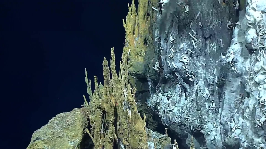 CIRCA 2010s - Hydrothermal Vents from 2016's Deepwater Exploration of the Marianas