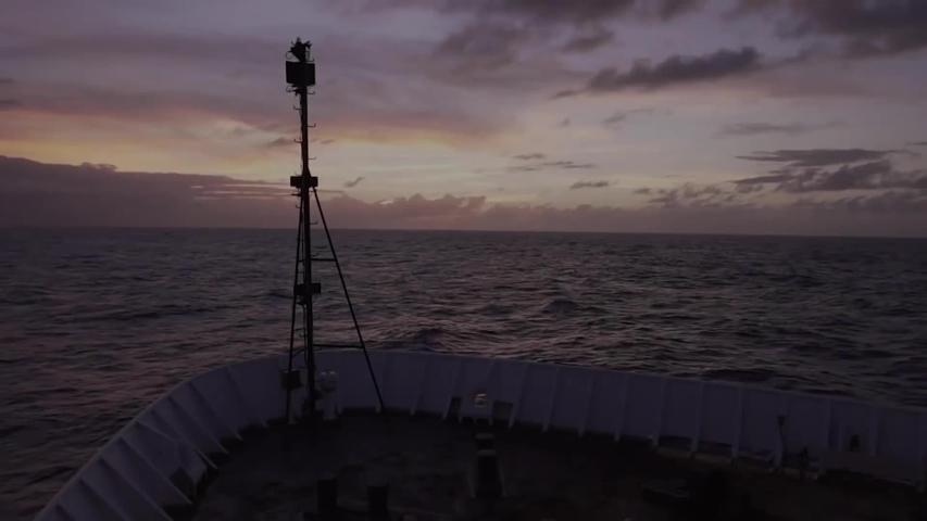 CIRCA 2010s - NOAA explores biodiversity hot spots of the Mariana Trench, 2016