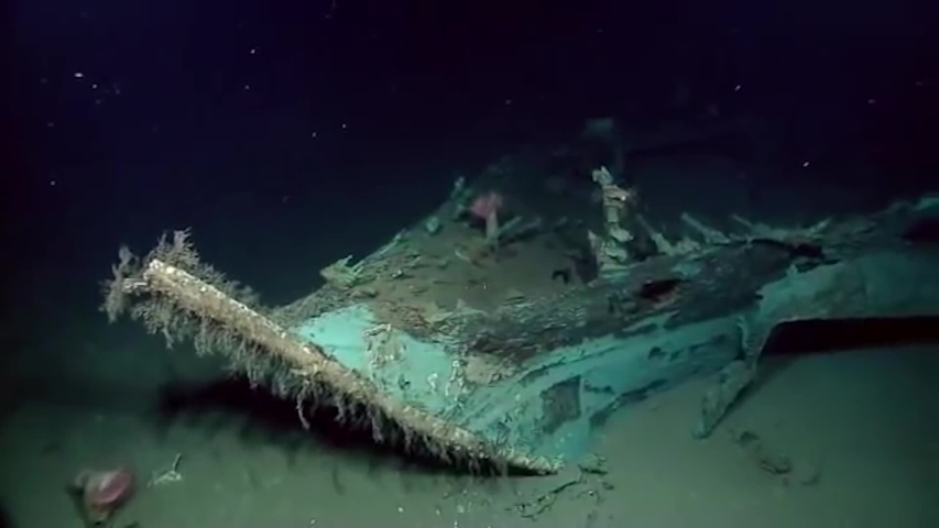 Three Remarkable Shipwreck Stories
