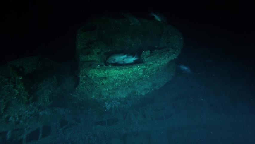 CIRCA 2010s - NOAA explores two recently discovered World War II shipwrecks off the coast of North Carolina, 2016