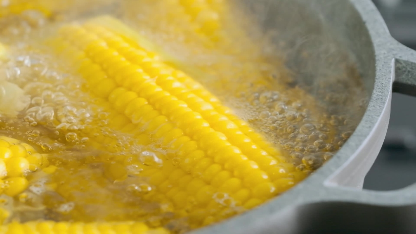 Ripe ears of corn in boiling water with vitamins for good health. Yellow corn in hot pot boiler. Cooking vegetables in a pot of boiling water. Royalty-Free Stock Footage #1036572551