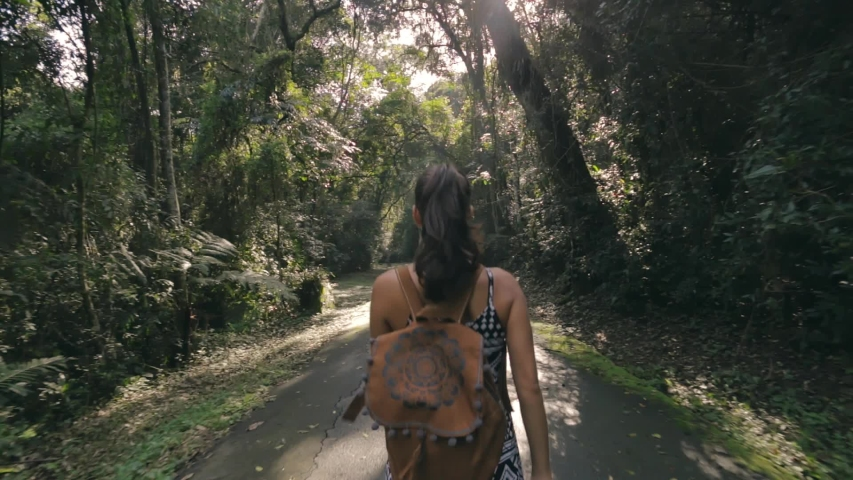 Hiking woman walk in rainforest jungle. Rear back view of girl hiker walking with backpack through dense rain forest nature on brazil, summer day, sun effect.